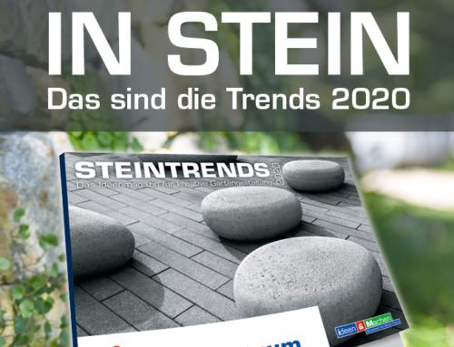 Die aktuellen STEIN Trends entdecken!